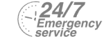 24/7 Emergency Service Pest Control in Bethnal Green, E2. Call Now! 020 8166 9746